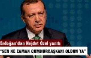 Erdoğan: Nejdet Özel'in istifasını isteyeceğine...