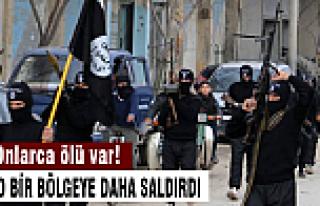 IŞİD bir bölgeyi daha ele geçirdi