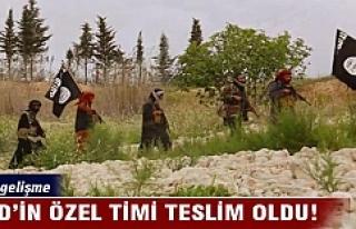 IŞİD'in 'özel timi' teslim oldu