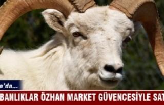 Kurbanlıklar Özhan Market güvencesiyle satışta…