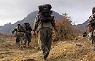 PKK'nın bölge sorumlusu Kobani'de öldürüldü