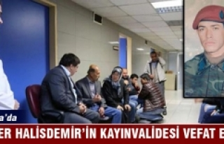 Şehit Astsubay Ömer Halisdemir'in kayınvalidesi...