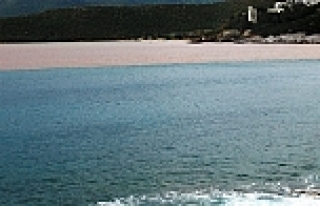 Sel denizin rengini değiştirdi
