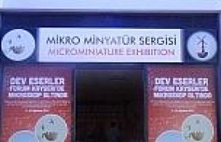 Ukraynalı Sanatçı Syadrısty'nin Mikro Minyatür...