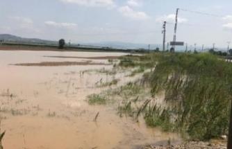 Bursa'da tarlalar su altında kaldı