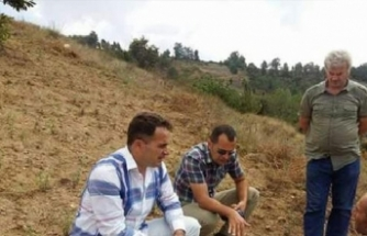Bursa'da çiftçiyi dolu vurdu