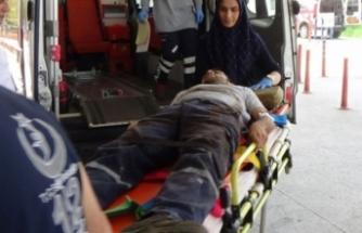 Bursa'da feci kaza! 2 işçi kalasların altında kaldı