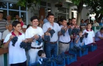 Bursa'nın en iyi üzümleri seçildi