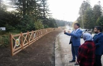 Uludağ'ın 4 noktasına endemik park kurulacak!