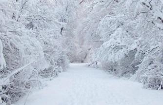 Bursa'ya kar yağdı!