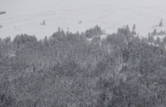 Uludağ'da yoğun kar yağışı hayatı felç etti!
