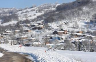 Bursa'da 93 seçmenli köyde 6 muhtar adayı
