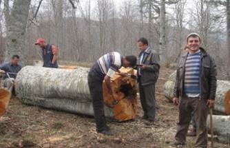 """OGM: """"7 milyon kişi orman köyünde yaşıyor"""""""
