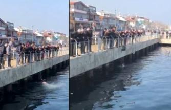 Bursa'da buz gibi suya girdi! Bakın neden?