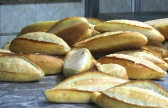 Ekmek israfı artıyor