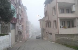 Yoğun sis Mudanya'yı etkisi altına aldı
