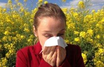 Bahar ayları alerjik nezle yüzünden kabusa dönmesin!