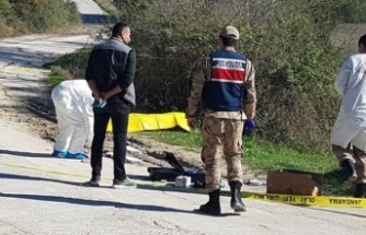 Döve döve öldürüp yol kenarına attılar