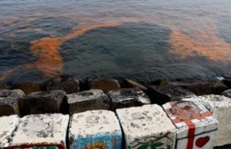 Marmara Denizi turuncuya büründü! İşte nedeni