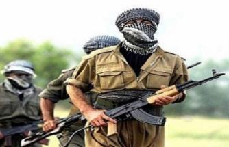 Terör örgütünde büyük panik! PKK gözünü masum çocuklara dikti