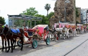 Antalya'da faytonculuk 10 Haziran'da sona eriyor