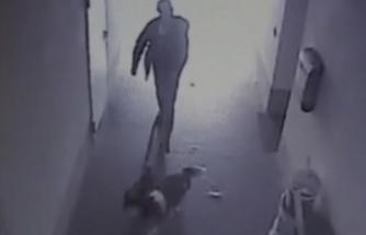 İki köpekle geldi! Camiyi yakıp kaçtı!