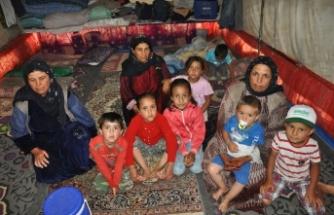 Bursa'da dram! Çadırları su bastı, mahsur kaldılar
