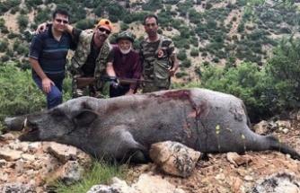 Dev domuzu öldürüp fotoğrafını çekti