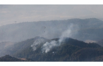 İzmir'deki yangın 3 gün sonra kontrol altında