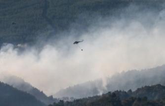 İzmir'deki orman yangını ile ilgili flaş gelişme!