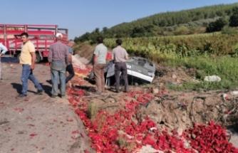 Bursa'da kamyon ile kamyonet çarpıştı, biberler yola saçıldı