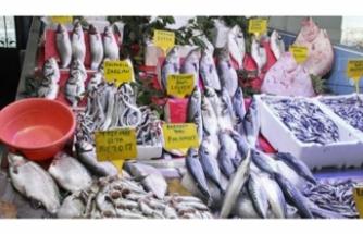 Kalkan balığının fiyatı dudak uçuklatıyor!