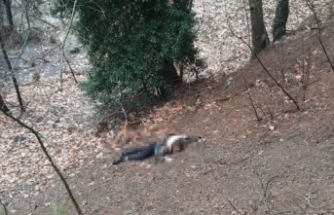 Genç kadını çocukşakrının gözü önünde katletti!  Detaylar kan dondurdu!