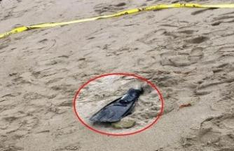 Sahile vuran yüzücü paletindeayak kemikleri bulundu