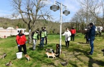 Mustafakemalpaşa'da sokak hayvanları unutulmadı