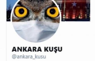 Twitter fenomeni  gözaltına alındı