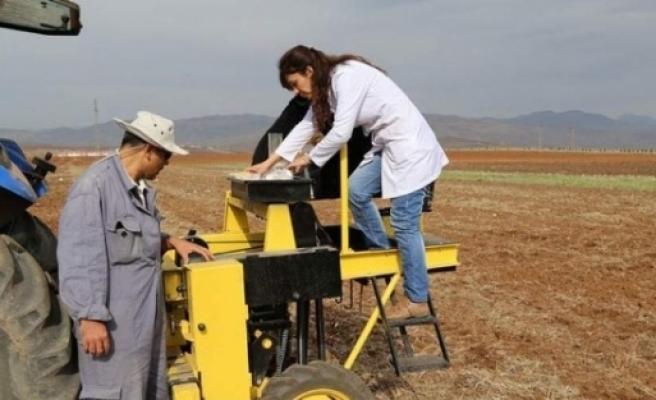 101 Tahıl Çeşidinin Ekimi Yapıldı