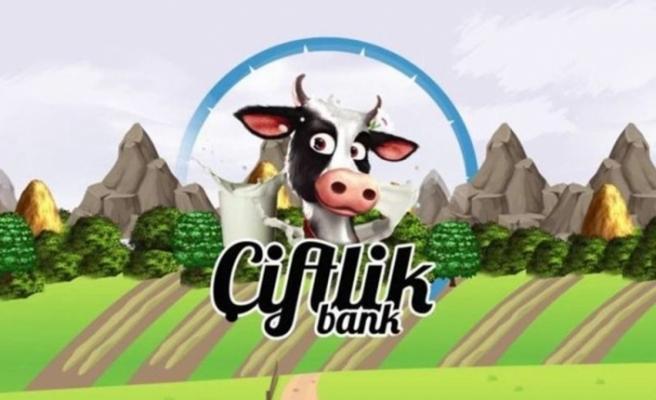 Çiftlikbank'ın beyni yakalandı, Türkiye'ye getirildi