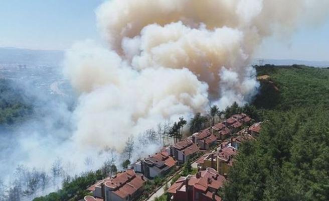 Bursa'da büyük orman yangını! Alevler hızla yayılıyor!