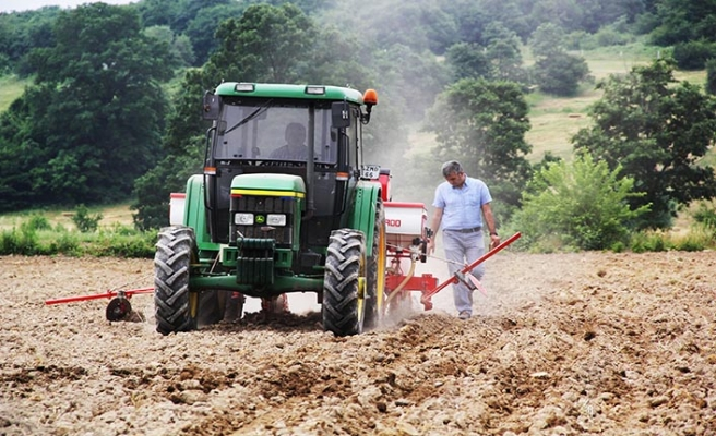 """""""Milli Tarım Yerli Tohum Deneme Ekimleri"""" projesinde ilk mısır hasadı yapıldı!"""