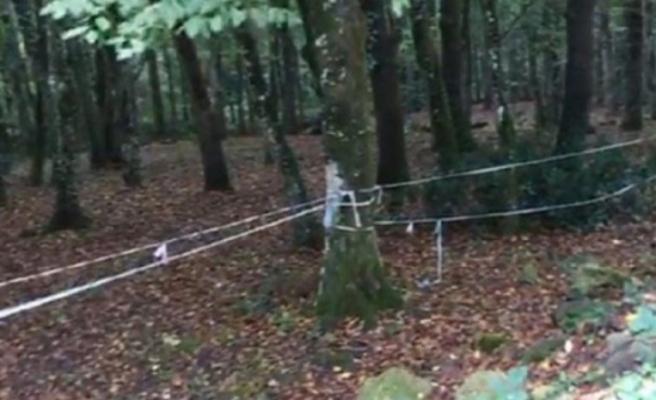 Cemal Kaşıkçı'nın izi ormanda aranıyor!
