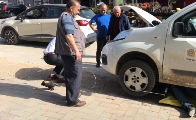 Bursa'da motora sıkışan yavru kediyi PTT çalışanları kurtardı