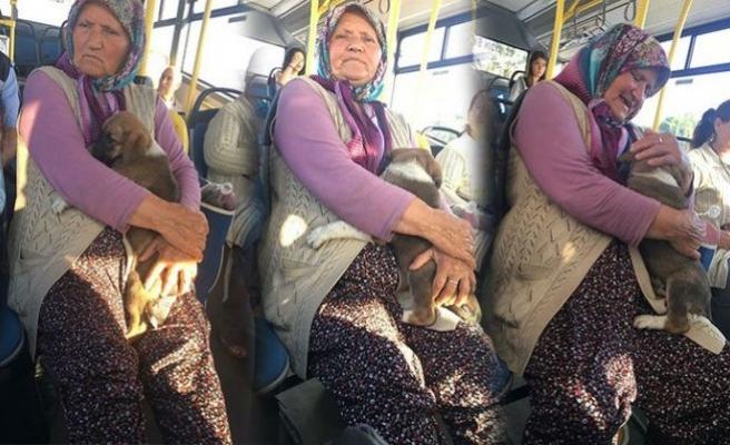Yavru köpekle otobüse bindi, sosyal medyada gündem oldu