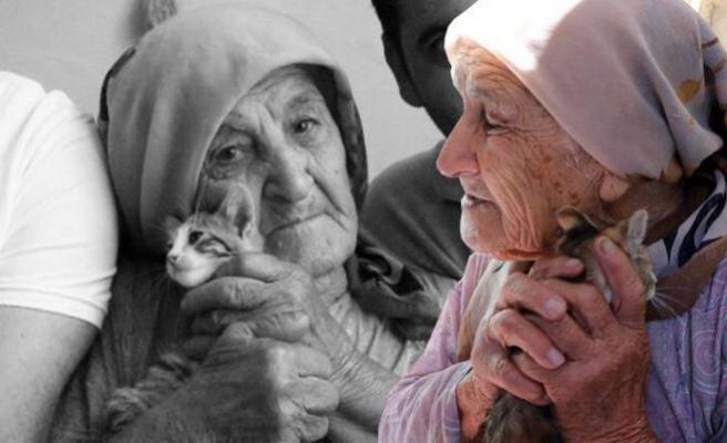 Kedisinin ardından gözyaşı döken yaşlı kadın yürek burktu