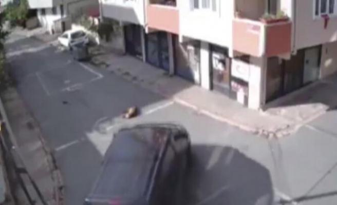 Yolda uyuyan köpeği aracıyla ezen kişi hakkında karar