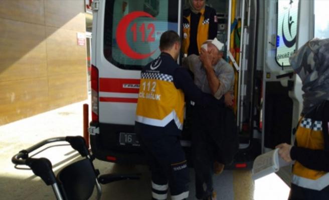 Bursa'da tarlasına girdiği yaşlı adama dehşeti yaşattı!