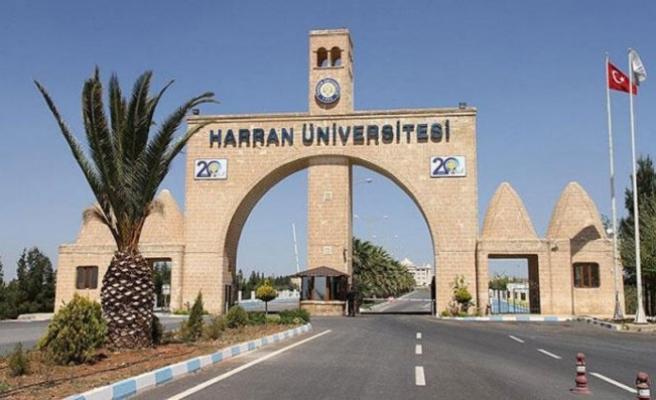 Harran Üniversitesi'nde toplu istifa