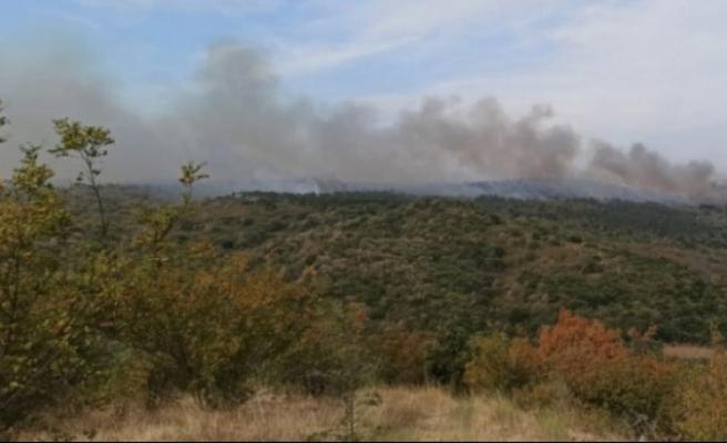 Sınırda yangın! 3 gündür devam ediyor...