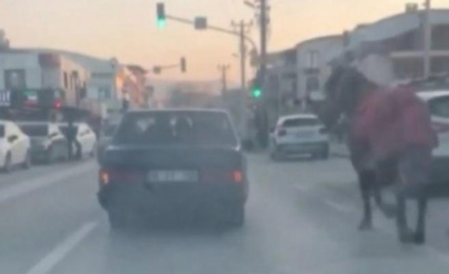 Bursa'da aracına at bağlayıp caddelerde koşturdu