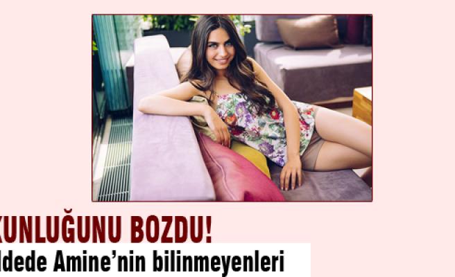 7 maddede Amine Gülşe!
